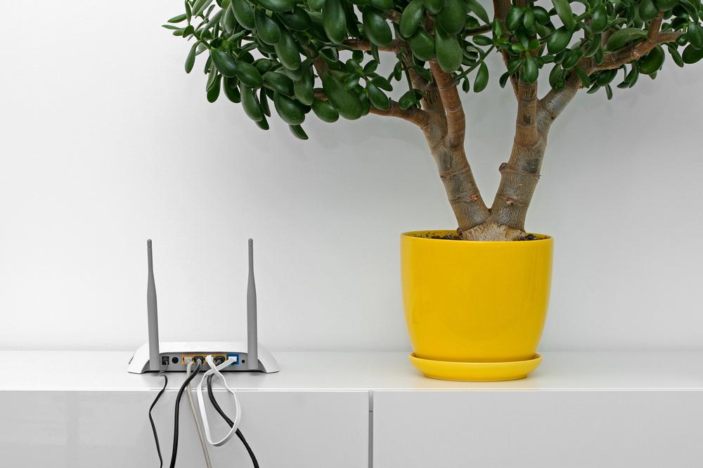 Así puedes comprobar si un Router está configurado correctamente - router