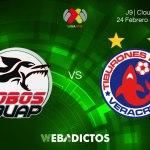 Transmisión de Lobos BUAP vs Veracruz el 24 de febrero 2018 ¡En vivo!