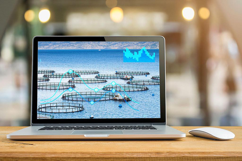 Diseñan científicos mexicanos software que incrementa producción acuícola en granjas - software-traquanet