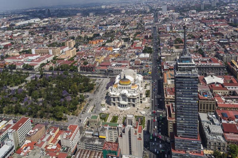 Los distintos sitios para capturar las mejores fotos de jacarandas en CDMX - jacaranda-trees-mexico-city-1-800x531