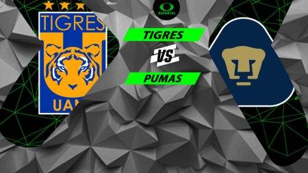Tigres vs Pumas, Liguilla del Apertura 2018 ¡En vivo por internet!