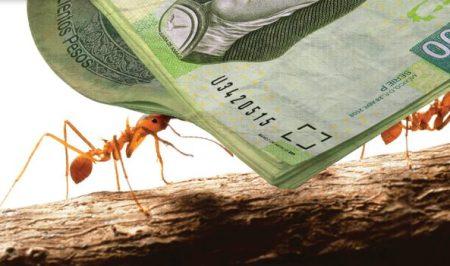 Gastos hormiga: una «plaga» financiera a combatir
