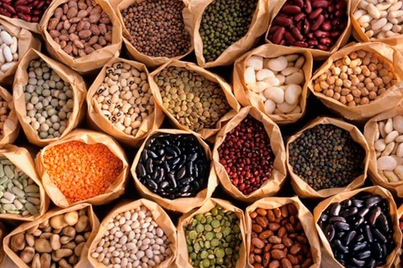 Crean universitarios suplemento nutricional a base de harinas de cereales y leguminosas de bajo costo - leguminosas
