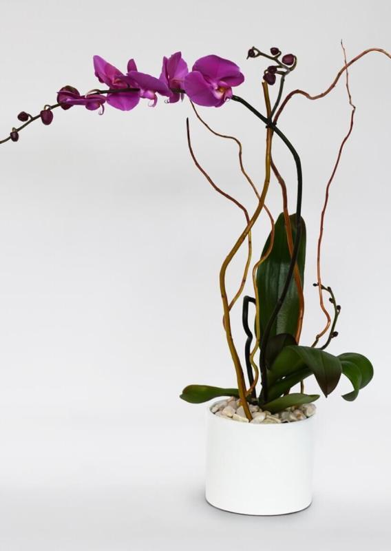 Test para saber qué flor es la perfecta para tu mamá - orquideas