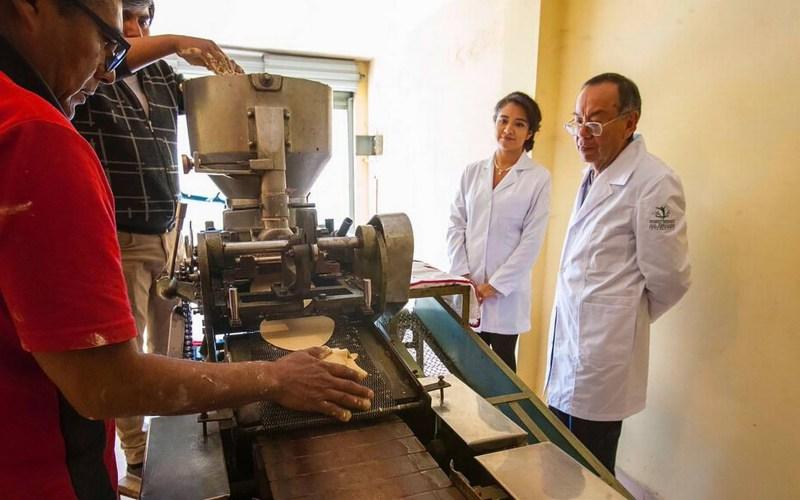Científicos crean tortilla de cebada para ayudar en el control de glucosa en sangre - tortilla-de-cebada-cientificos-del-instituto-politecnico-nacional-800x500