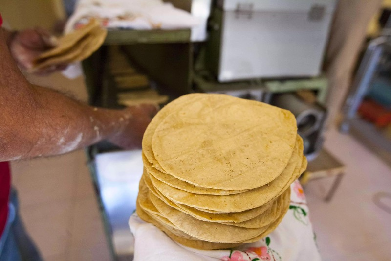 Científicos crean tortilla de cebada para ayudar en el control de glucosa en sangre - tortilla-de-cebada