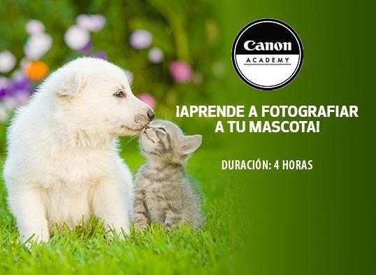 Canon Academy lanza tres workshop de fotografía - workshop-de-fotografia-de-mascotas