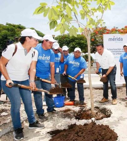 Mérida, una de las tres ciudades mexicanas reconocidas por la ONU en materia sustentable