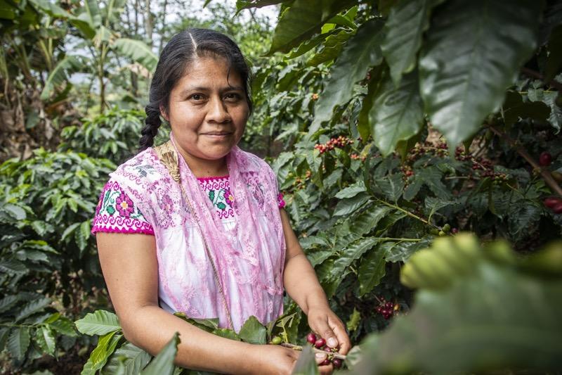 Mujeres que cultivan café en Puebla - jetzabel