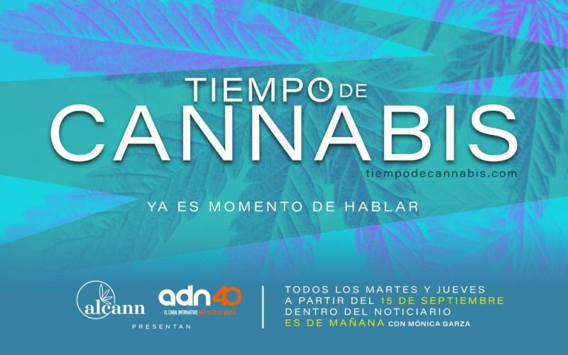 """Estreno """"Tiempo de Cannabis"""", el primer espacio en televisión abierta mexicana - tiempo-de-cannabis-800x500"""
