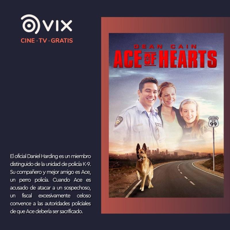 Maratón de lomitos en vix – cine y tv gratis - 2-ace-el-mejor-amigo-de-la-familia-vix-800x800