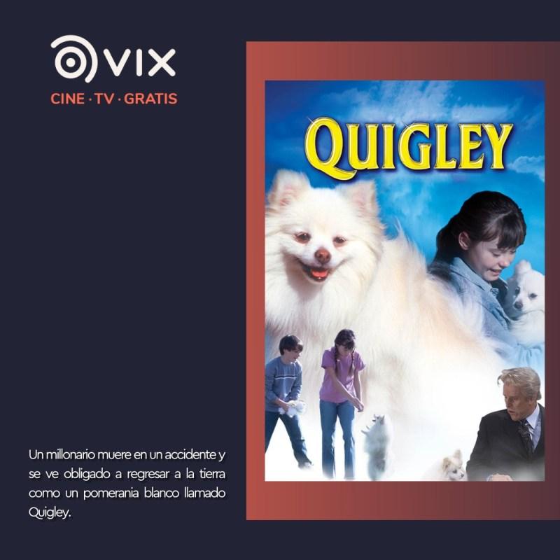 Maratón de lomitos en vix – cine y tv gratis - 7-quigley-vix-800x800