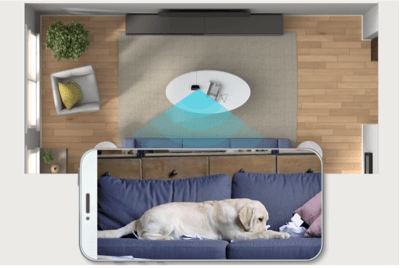 Amazon lanza tienda especial del día mundial del perro y conoce algunos tips de Alexa para consentirlos en su día