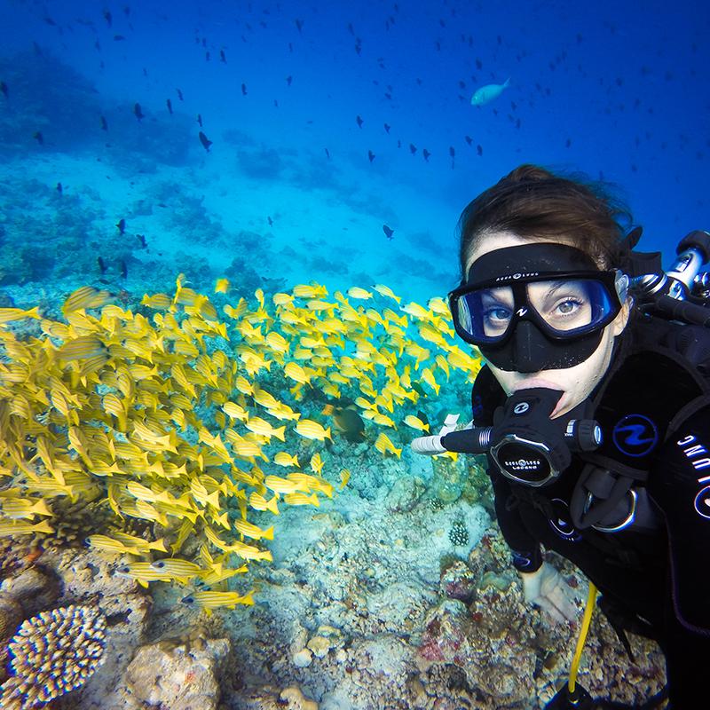 Cómo capturar las mejores tomas bajo el agua este verano - gopro-news-gopro-as-a-snorkeling-dive-camera-selfie-800x800