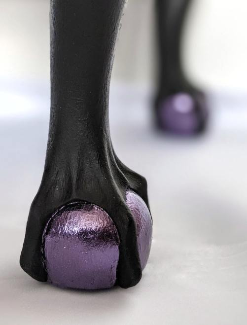 Nightshade (foot close up)