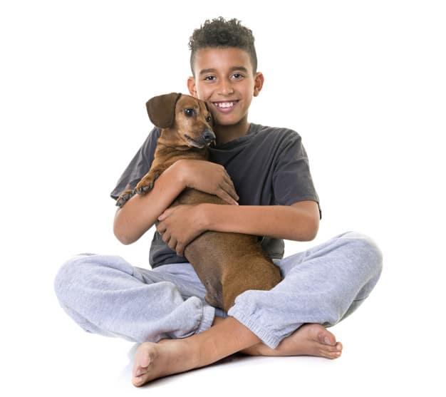 dachshund and boy