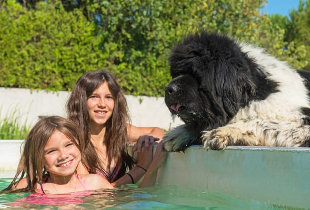 Terra Nova e duas meninas dentro da piscina