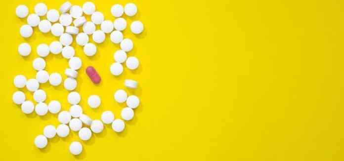Remédios para Pulgas e Carrapatos