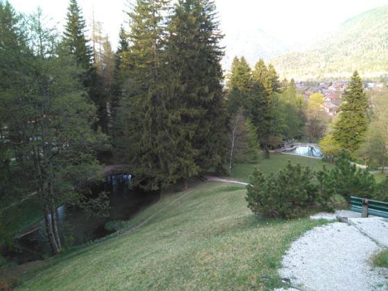 Krausegarten