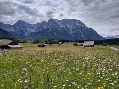 Sommerwiese am Schmalensee