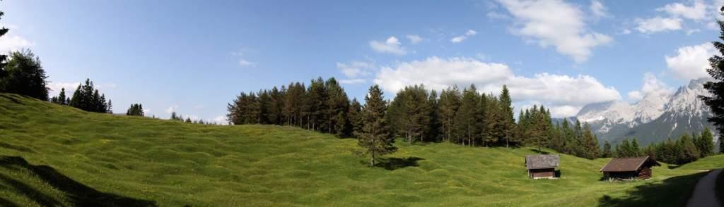 Buckelwiesen eine geomorphologische Besonderheit des alpinen Raumes