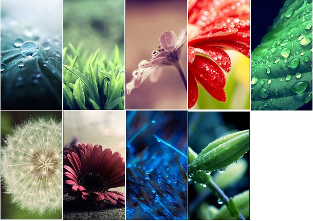 nine nature wallpapers