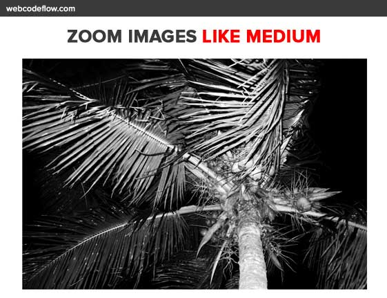 Zoom-Images-like-Medium