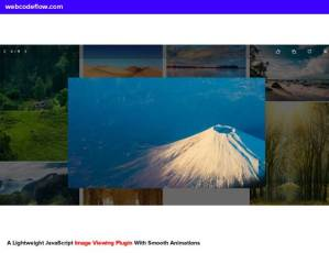 image-viewing-preview-plugin