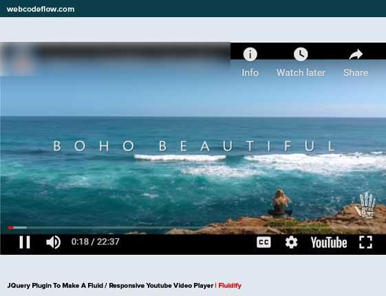 youtube-video-player-fluidify