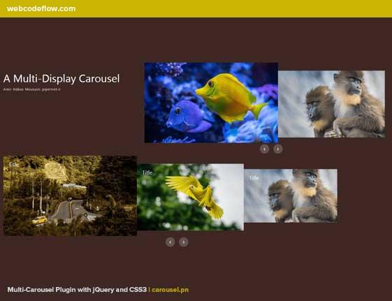 multi-display-carousel-plugin