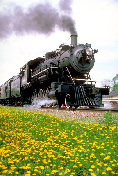 Trens e Locomotivas by Daniel Alho / Steam train