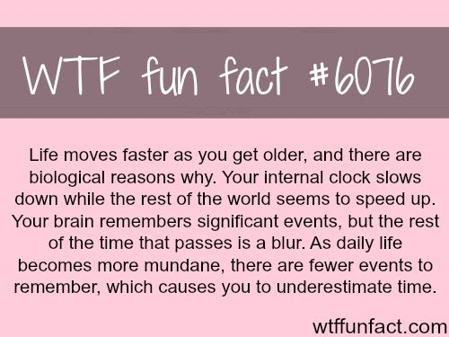 Why life seems like it's moving faster – WTF fun facts