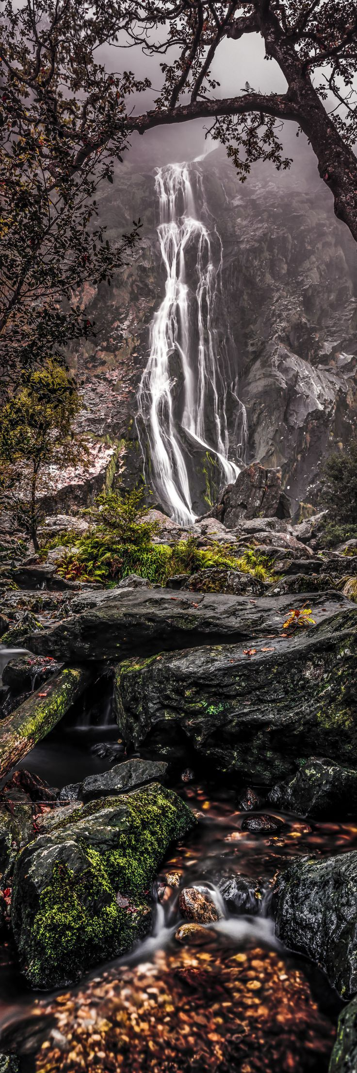 Powerscourt Waterfall, Wicklow, Ireland. Look at it closely and youll see a w