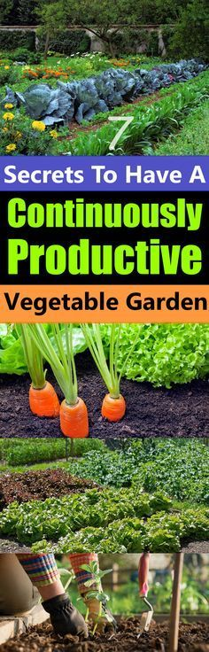 Dont you want a garden that will not only produce a bountiful harvest of fres