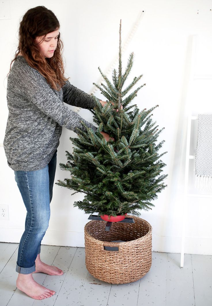 Put a bucket upside down in a large basket; small tree in small stand goes on top