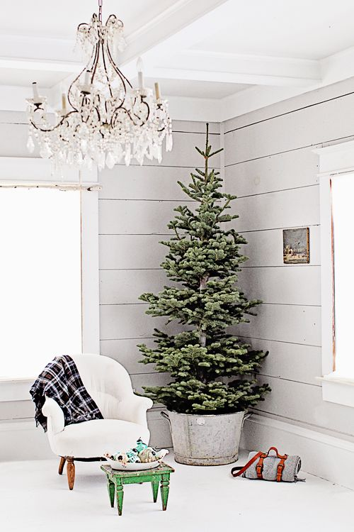 Dreamy Whites: French Farmhouse Christmas Collection and a $500.00 Dreamy Whites G
