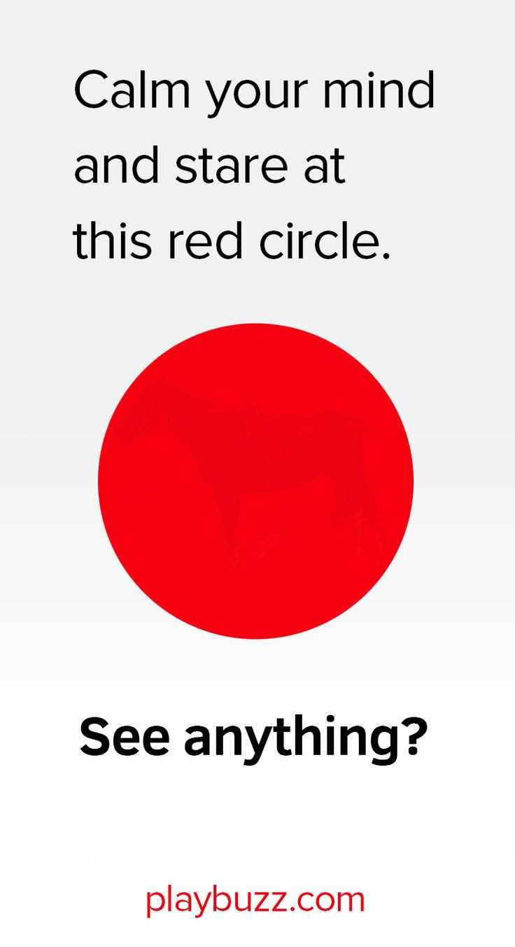 This one is stumping the internet – Whats inside the red circle?