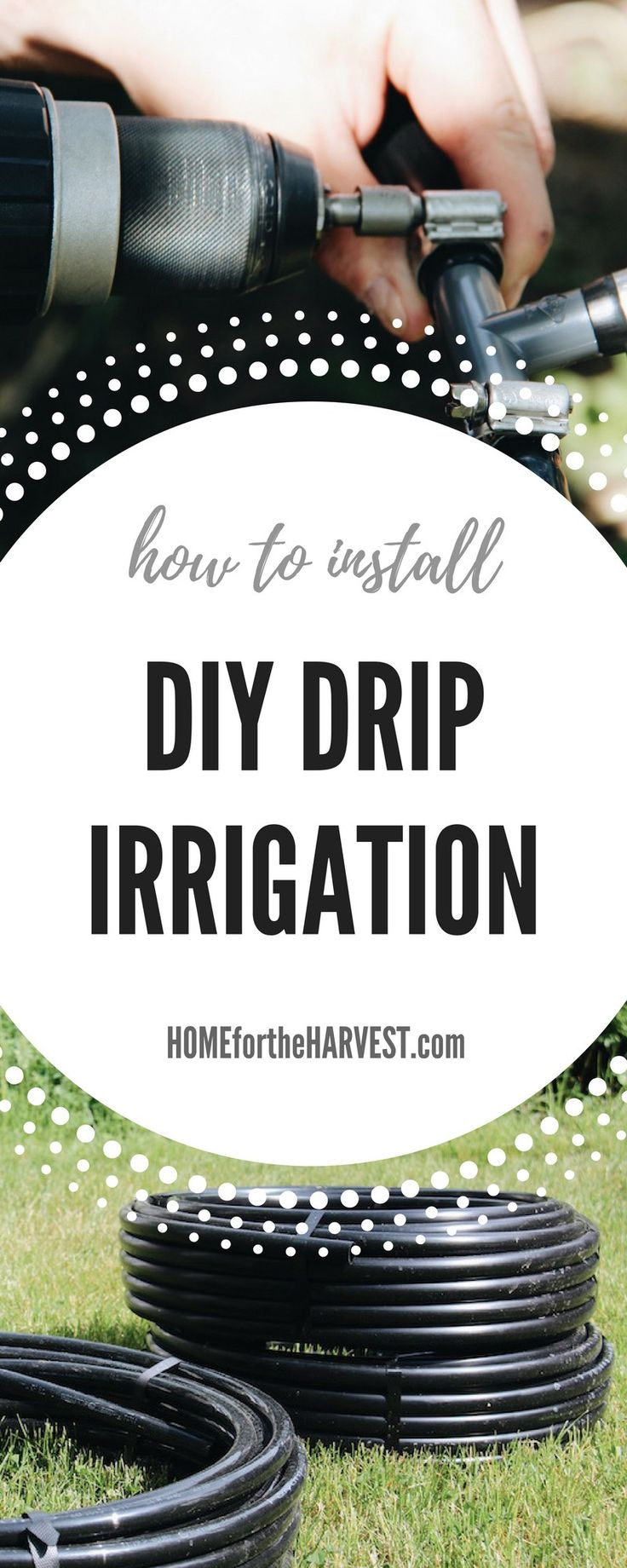 How to Install DIY Drip Irrigation – Tutorial and Free Printable | Home for the Harvest