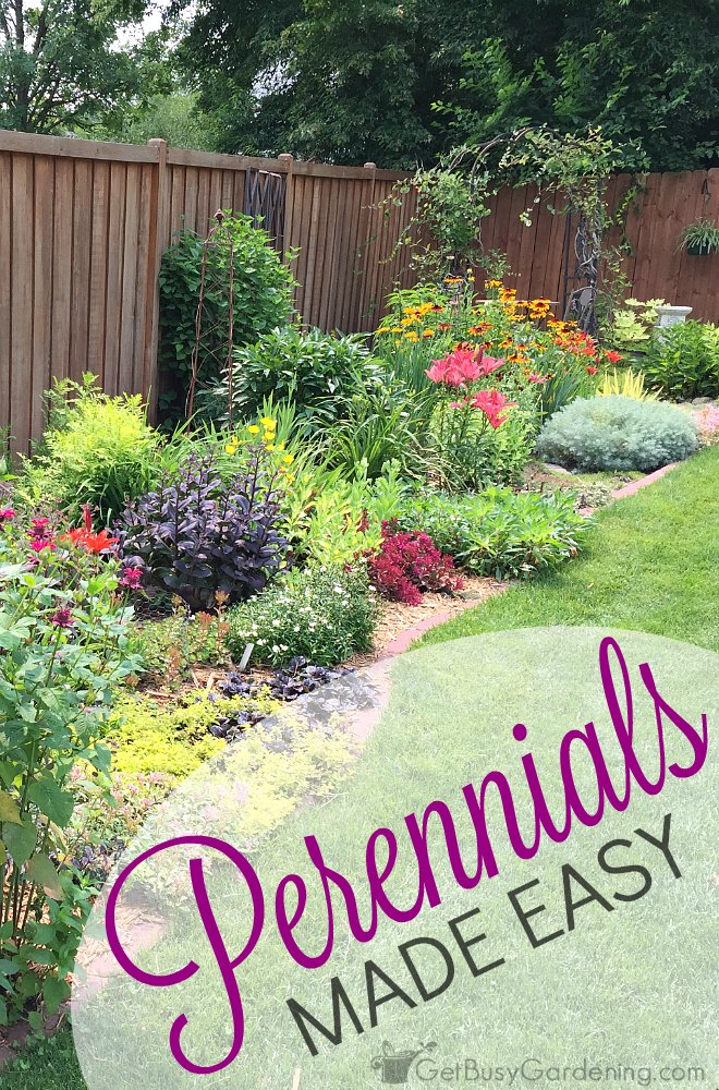 Tips for perennials made easy: How to avoid (or fix) dull, boring gardens and create eye-popping perennial gardens that everyone