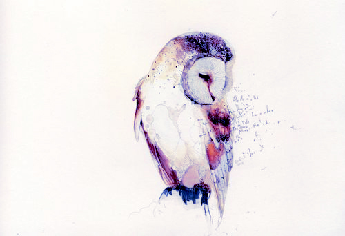 watercolor owl… tattoo inspiration perhaps