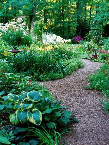 Gravel: budget friendly  good drainage; low-maintenance; won't disrupt plants' roots; can stand up to fairly heavy traffic. Cons