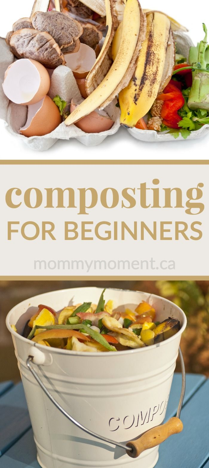 COMPOSTING FOR BEGINNERS – find easy tips & tricks and answers to all your composting questions!