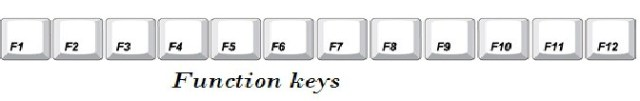 Function keys information for kids - कंप्यूटर के इनपुट डिवाइस (Input Devices)
