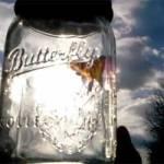 Un fluture si un licurici