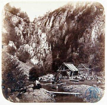 Szathmari (3)
