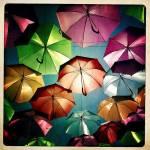 Un cer de umbrele
