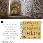 De neratat: expoziție Petre Mărgineanu