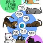 Cum latră câinele în coreeană?