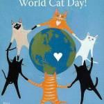 Opt citate despre pisici