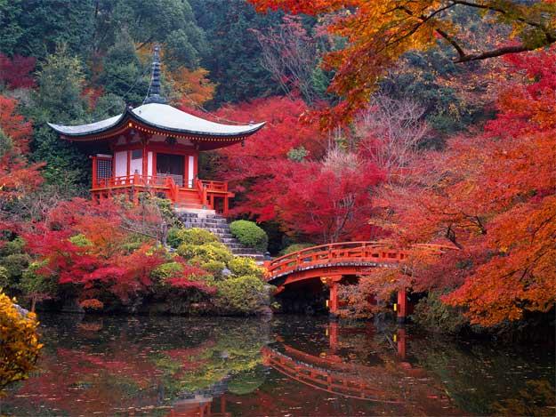 Japonia-toamna